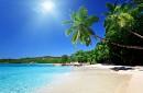 Lịch Khởi Hành Các Tour và các tuyến biển đảo Khuyến Mãi Mùa Thu Vàng