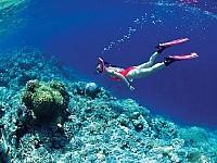 Đến Phú Quốc câu cá lặn biển ngắm san hô