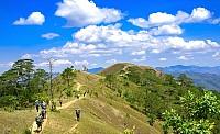 Hình ảnh tuyệt đẹp của con đường xuyên rừng đẹp nhất Việt Nam