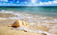 Phú Quốc ngọn sóng xanh giữa biển đảo