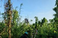 Tour chèo thuyền đi cầu khỉ ở U Minh Thượng