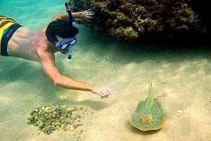 Tour Bắc Đảo Phú Quốc- Câu Cá Lặn Biển Ngắm San Hô