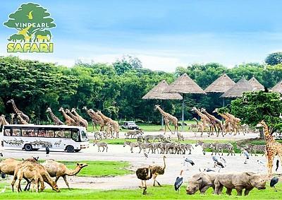 Du lịch Phú Quốc - vườn thú vinpearl Safari 4 ngày