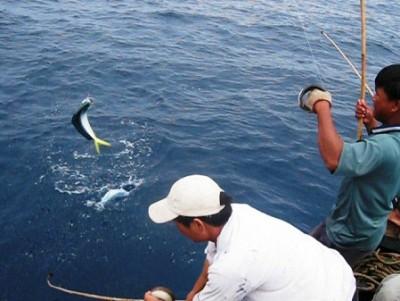 Những Trải Nghiệm Khó Quên Khi Đến Với Đảo Phú Quốc