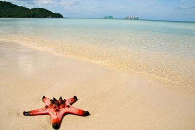 Đảo Ngọc Phú Quốc - Vẻ Đẹp Hoang Sơ Hấp Dẫn