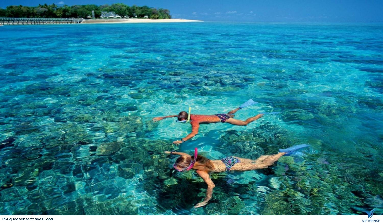 Câu cá lặn biển ngắm san hô ở đảo ngọc Phú Quốc